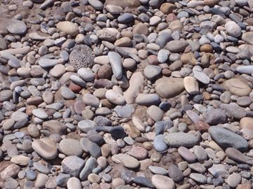 Picture of River Rock - Best Deal - By The yard